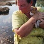 Family cat renamed after hurricane