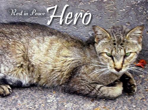 RIP Hero