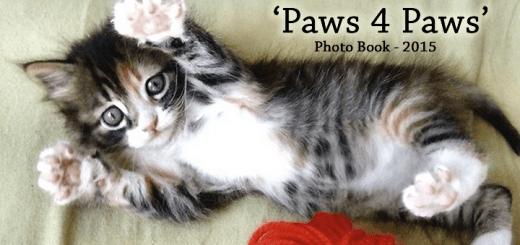 'Paws 4 Paws'
