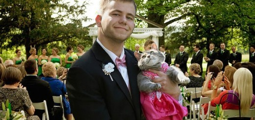Sam couldn't find a date for his prom so he took his cat Ruby Instead!