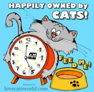Happily owned by cats!