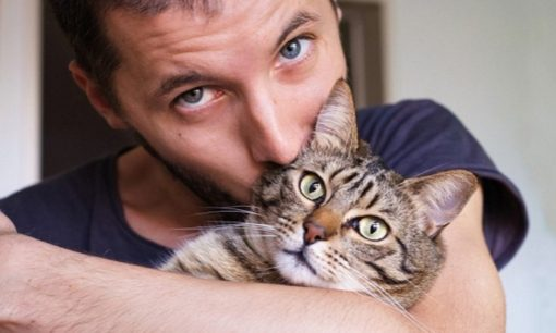 Dating men with cats