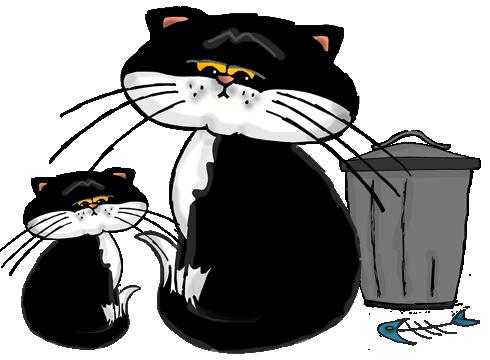 cat_homeless_illustration