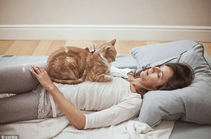 Do Cats Really Prefer Women?