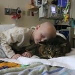 Pets and children with cancer