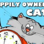 """6 benefits of being """"happily owned"""" by a cat"""