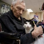 Oscar, the cat who rules the dementia ward