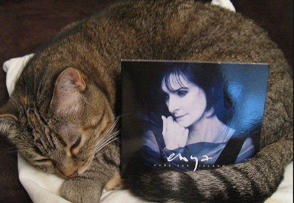 Enya's fascinating life, living alone in a castle with cats