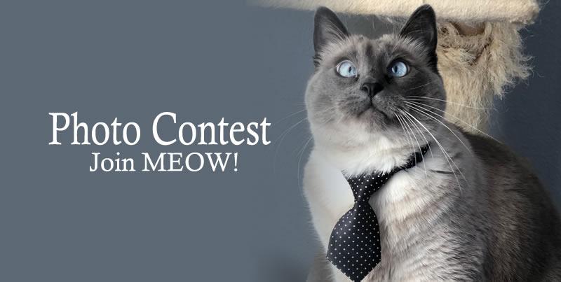 2020 Calendar Photo Contest