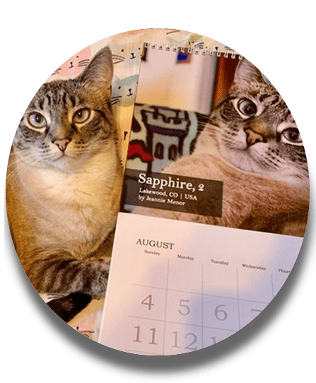 Lovecats wall calendars